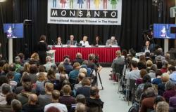 Monsanto và Các Sản Phẩm: Một Đại Hoạ Cho Thế Giới
